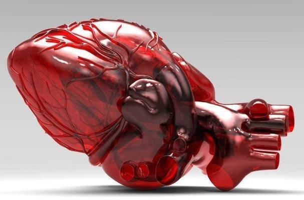 همکاری مهندسان و پزشکان برای جایگزینی دریچه های قلبی