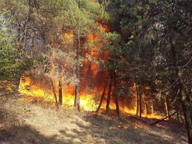 تشکیل تیم های اطفاء حریق در مناطق مستعد آتش سوزی