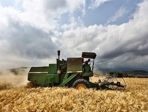 ایمانی در گفت و گو با خبرنگاران: نرخ 1600 تومانی خرید تضمینی گندم مطابق با هزینه های فراوری است، خودکفایی گندم ادامه دارد