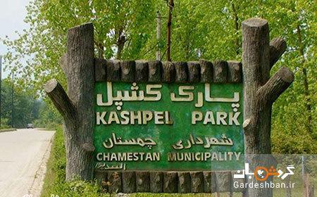پارک جنگلی کشپل؛طبیعتی توریستی در مازندران، عکس