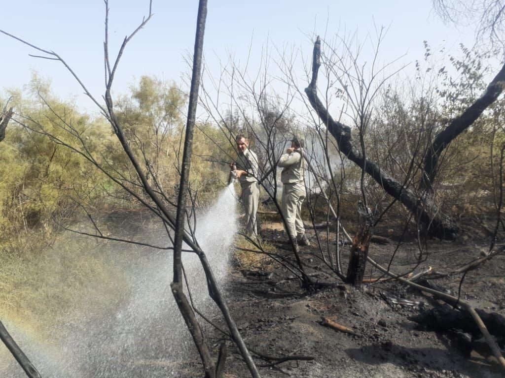 خبرنگاران آتش سوزی دوباره جنگل کرخه مهار شد