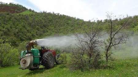 خبرنگاران 750 هکتار از جنگل های بلوط لنده محلول پاشی شد