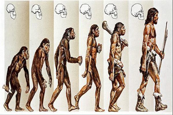 ما انسان ها اینگونه تکامل پیدا کردیم (عکس)