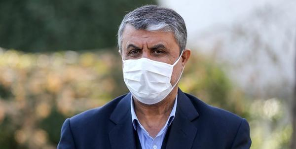 اسلامی رئیس سازمان انرژی وارد وین شد